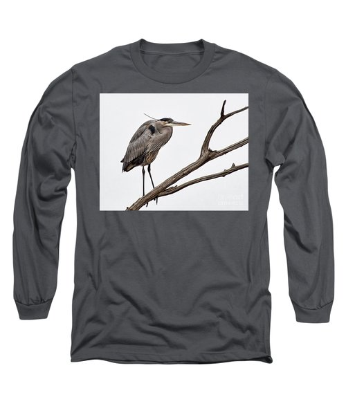 Out On A Limb Long Sleeve T-Shirt by Tamera James