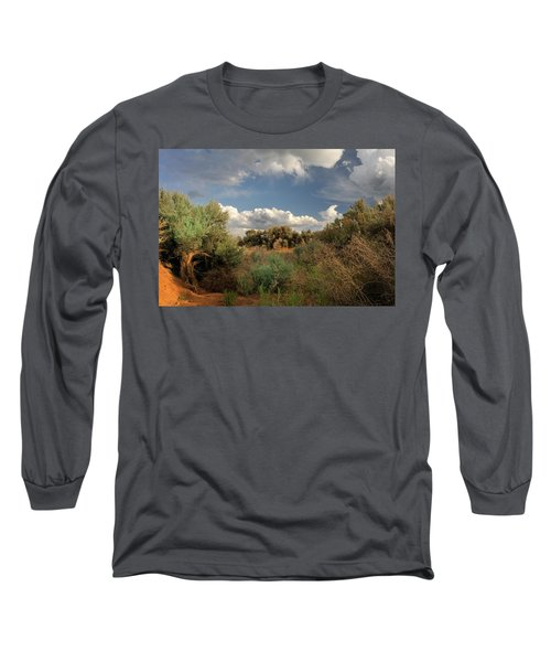 Out On The Mesa 4 Long Sleeve T-Shirt