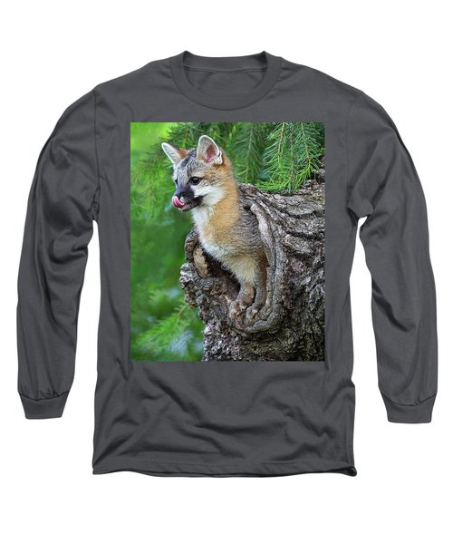 Out Pops A Gray Fox Long Sleeve T-Shirt