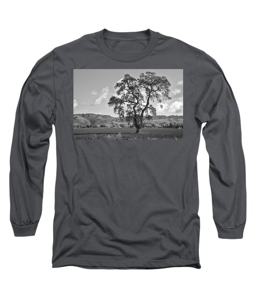 Pacheco Pass Long Sleeve T-Shirt by Sonny Marcyan