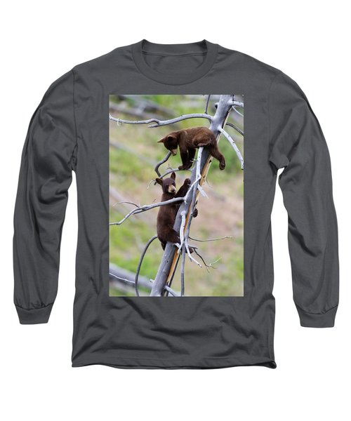 Pair Of Bear Cubs In A Tree Long Sleeve T-Shirt
