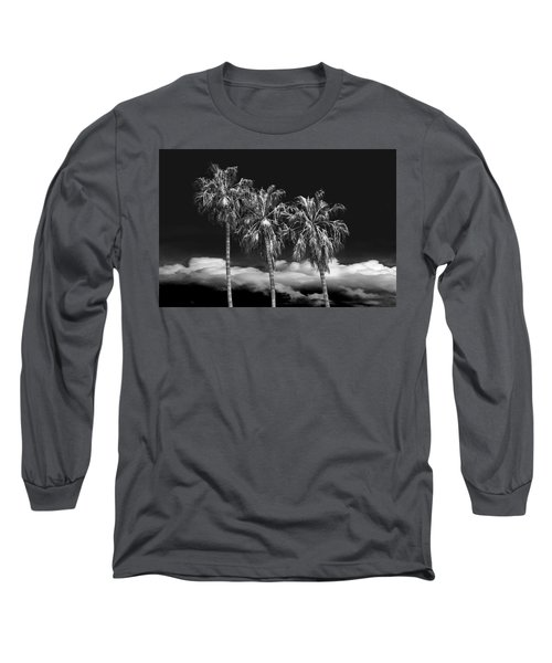 Long Sleeve T-Shirt featuring the photograph Palm Trees In Black And White On Cabrillo Beach by Randall Nyhof