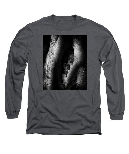 Palo Verde Treee Long Sleeve T-Shirt