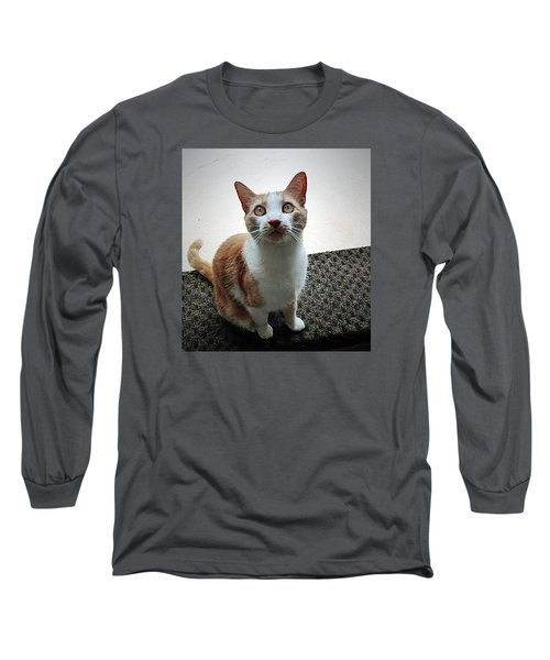 Patch Wants To Play Long Sleeve T-Shirt