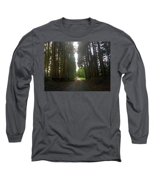 Path Through The Woods Long Sleeve T-Shirt