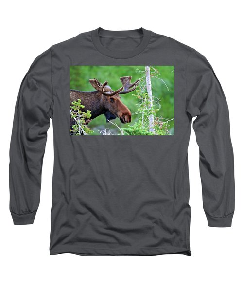 Long Sleeve T-Shirt featuring the photograph Peaking Moose by Scott Mahon