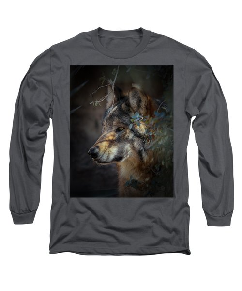Peeking Out From The Shadows Long Sleeve T-Shirt