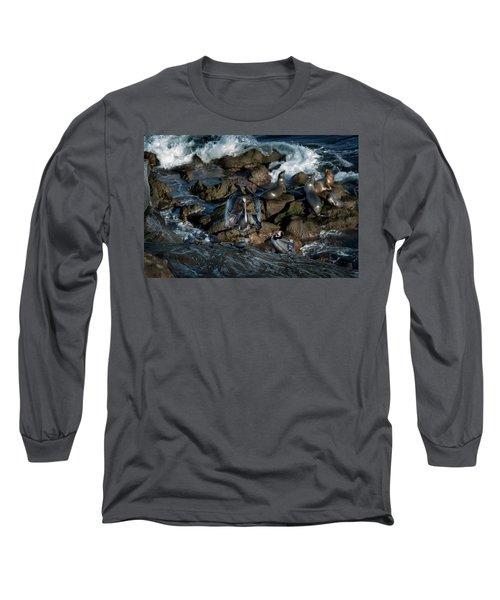 Pelican Landing Long Sleeve T-Shirt by James David Phenicie