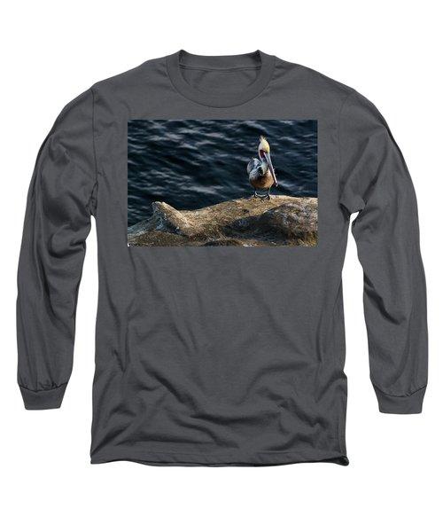 Pelican1 Long Sleeve T-Shirt by James David Phenicie