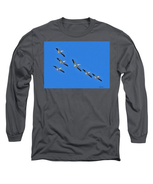 Pelicans In Blue Long Sleeve T-Shirt