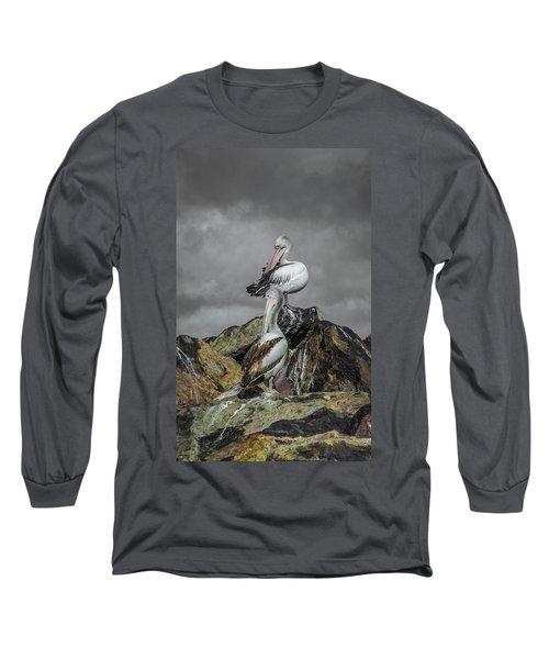 Pelicans On Rocks Long Sleeve T-Shirt