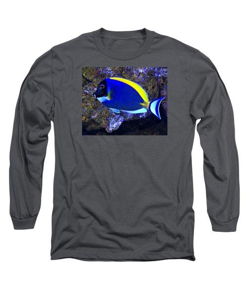 Blue Tang Fish  Long Sleeve T-Shirt by Kathy M Krause
