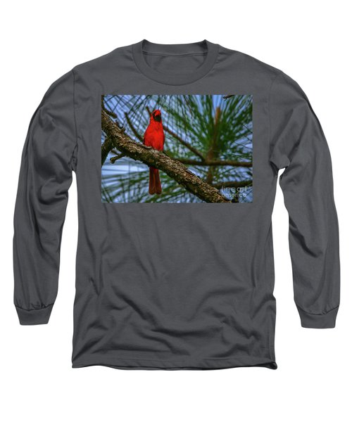 Perched Cardinal Long Sleeve T-Shirt