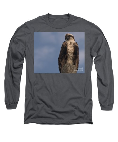 Perched Hawk Long Sleeve T-Shirt