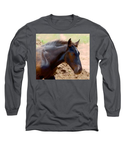 Percheron Colt - Digitalart Long Sleeve T-Shirt