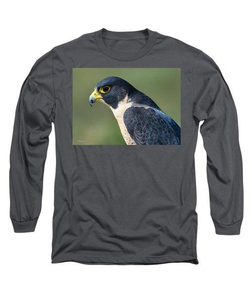 Peregrin Falcon Long Sleeve T-Shirt
