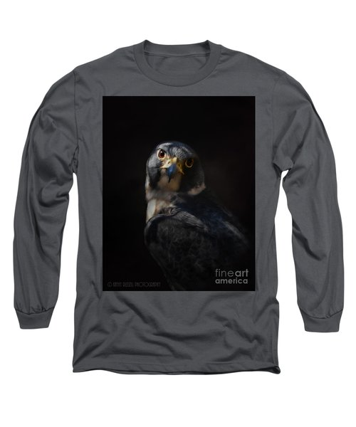 Peregrine Falcon Long Sleeve T-Shirt by Kathy Russell
