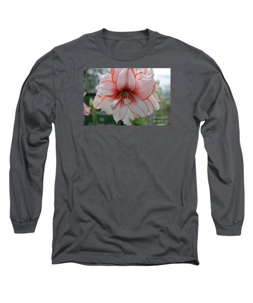 Perfect Amarylis Long Sleeve T-Shirt by DejaVu Designs