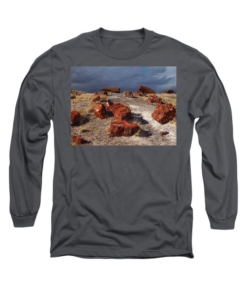 Long Sleeve T-Shirt featuring the photograph Petrified Forest National Park by James Peterson