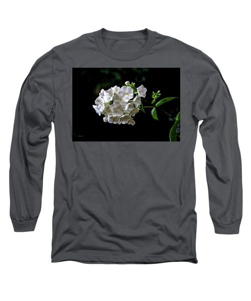 Phlox Flowers Long Sleeve T-Shirt