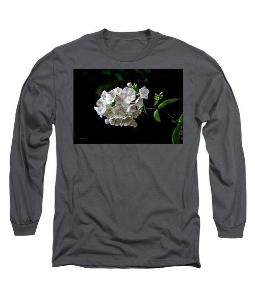 Phlox Flowers Long Sleeve T-Shirt