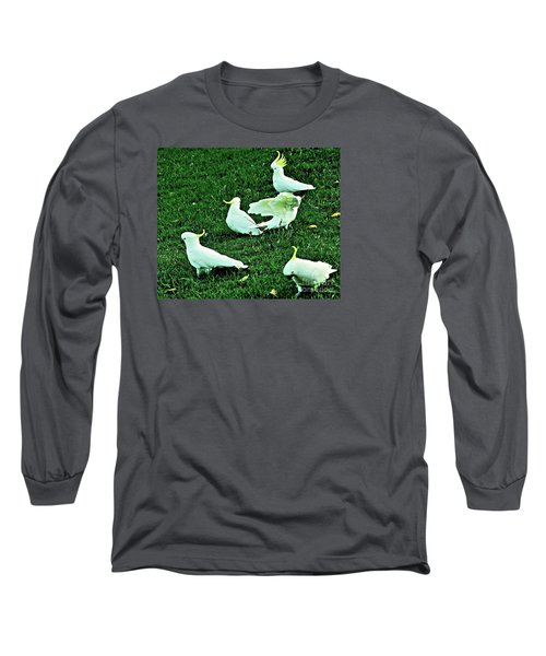 Picnic In The Park Long Sleeve T-Shirt