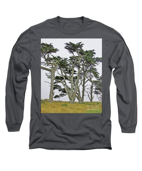 Pierce Pt. Study Long Sleeve T-Shirt