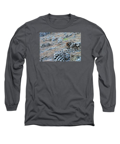 Pine Cones Long Sleeve T-Shirt by Kay Gilley
