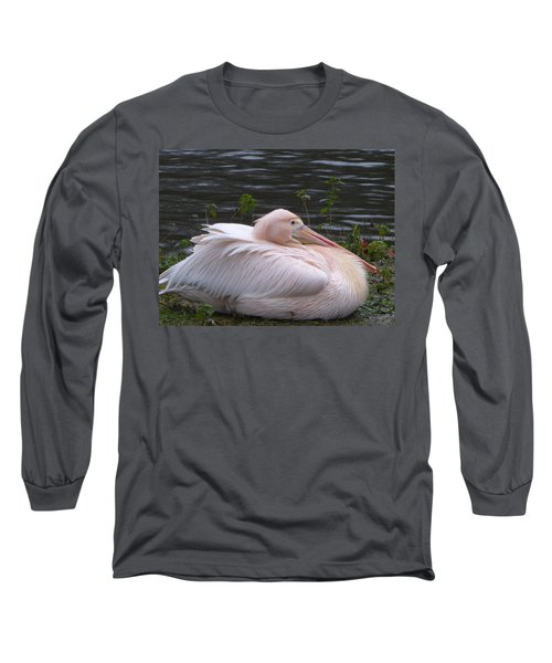 Pink Pelican Long Sleeve T-Shirt by Margaret Brooks