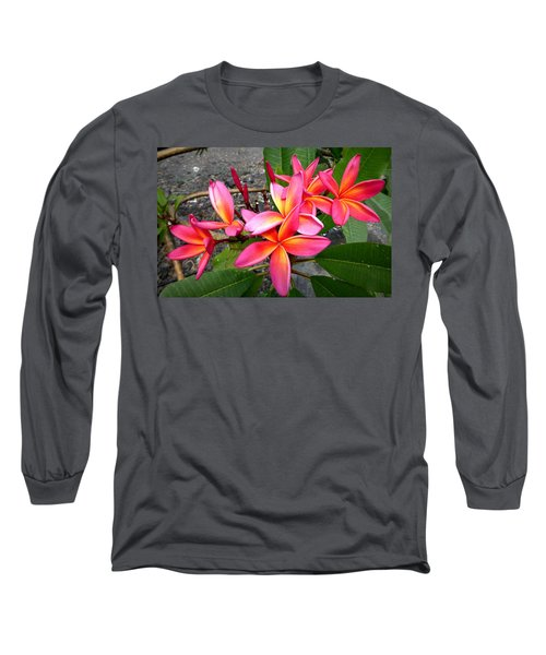 Pink Plumerias Long Sleeve T-Shirt