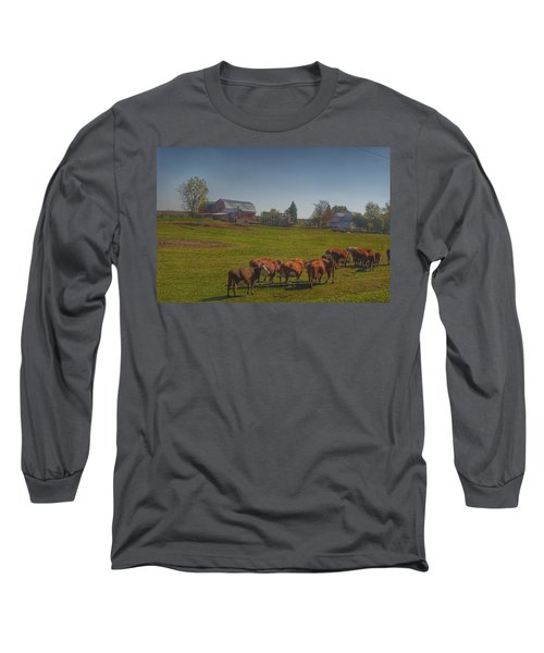 1014 - Plain Road Farm And Cows I Long Sleeve T-Shirt