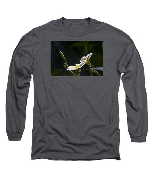 Plumeria Long Sleeve T-Shirt by Morris  McClung
