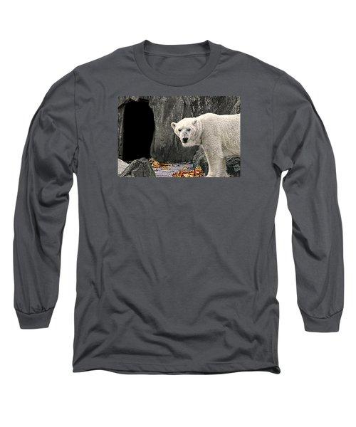 Polar Bear 101 Long Sleeve T-Shirt by Diana Angstadt