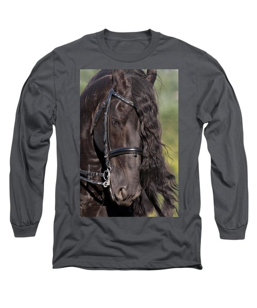 Portrait Of A Friesian Long Sleeve T-Shirt by Wes and Dotty Weber