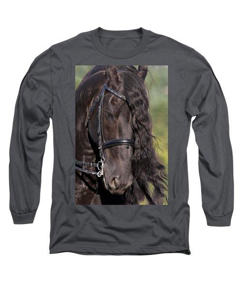 Portrait Of A Friesian Long Sleeve T-Shirt