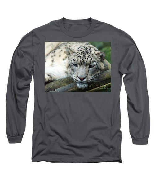 Portrait Of A Snow Leopard Long Sleeve T-Shirt