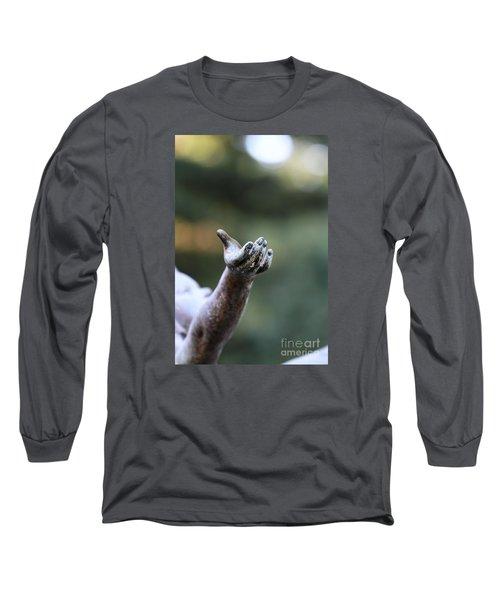Praise Long Sleeve T-Shirt