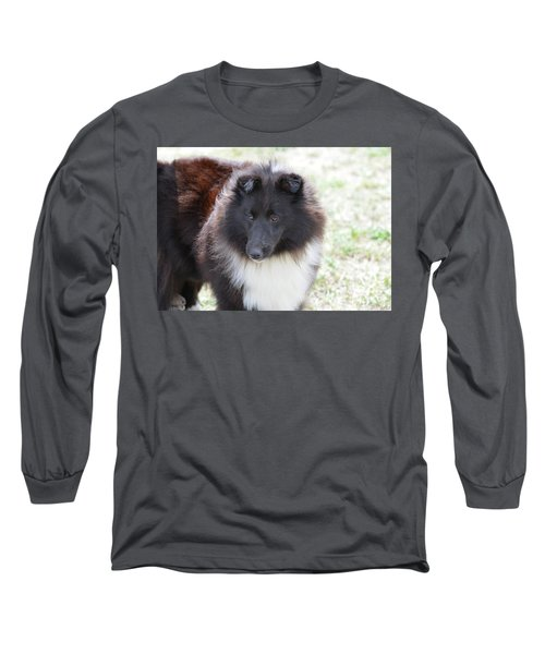 Pretty Black And White Sheltie Dog Long Sleeve T-Shirt by DejaVu Designs