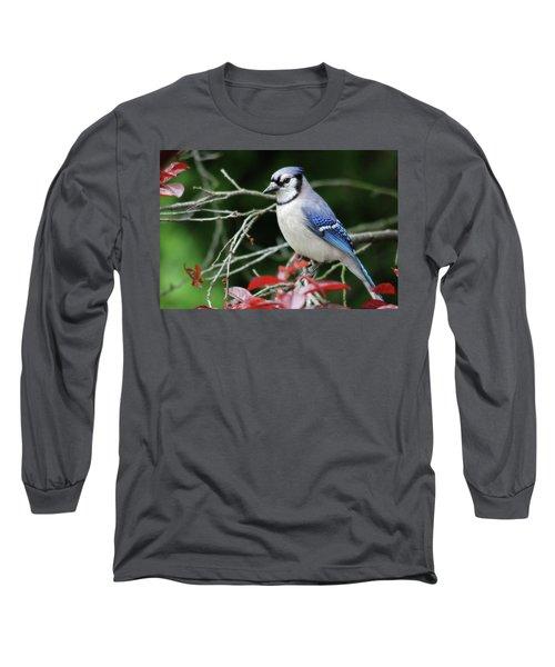 Pretty Blue Jay Long Sleeve T-Shirt by Trina Ansel