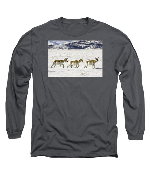 Pronghorns Long Sleeve T-Shirt