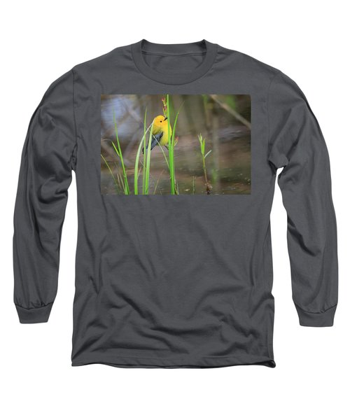 Prothonotary Warbler 5 Long Sleeve T-Shirt by Gary Hall