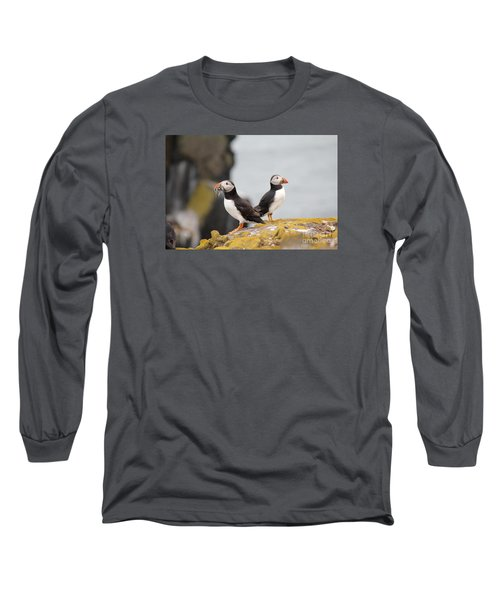 Puffin's Long Sleeve T-Shirt by David Grant