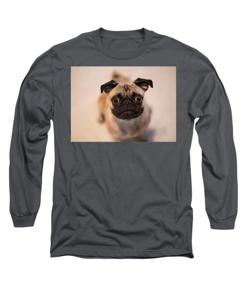 Long Sleeve T-Shirt featuring the photograph Pug Dog by Laura Fasulo