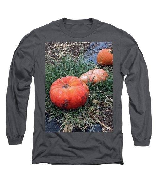 Pumpkins In A Row Long Sleeve T-Shirt by Enzie Shahmiri