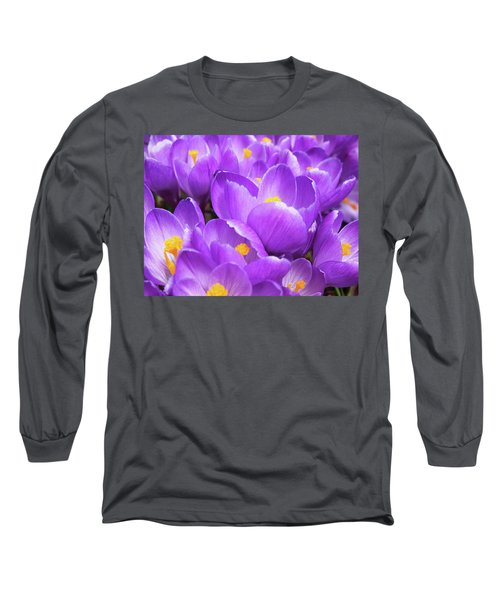 Purple Crocuses Long Sleeve T-Shirt
