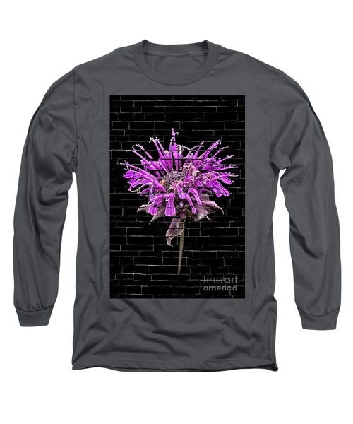 Purple Flower Under Bricks Long Sleeve T-Shirt by Walt Foegelle