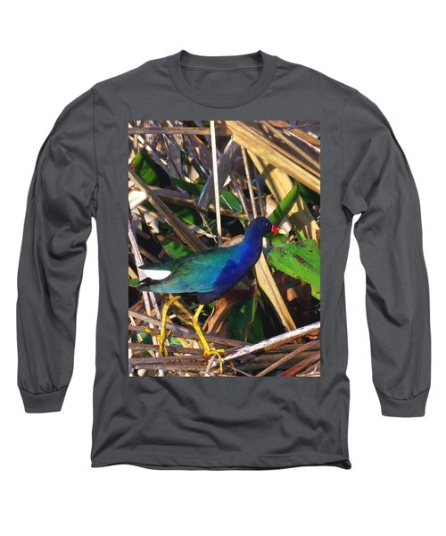 Long Sleeve T-Shirt featuring the photograph Purple Galinule 000 by Chris Mercer