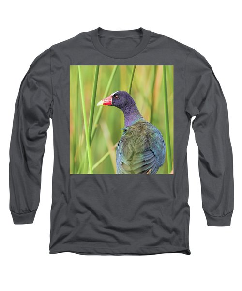 Purple Gallinule Long Sleeve T-Shirt