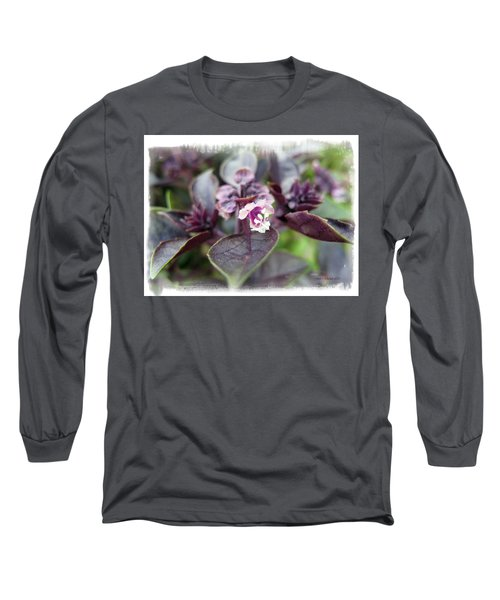 Long Sleeve T-Shirt featuring the photograph Purple In Autumn by Joan  Minchak