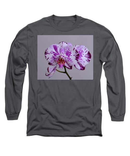 Purple Moth Orchid Long Sleeve T-Shirt by Kathy Eickenberg